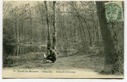 CPA - Carte Postale - France - Forêt De Meudon - Chaville - Etang De L'Ecrevisse  (D13630) - Chaville