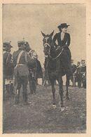 La Reine De Roumanie. Stampa 1916 - Estampas & Grabados