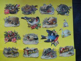 Découpis Oiseaux - Animals