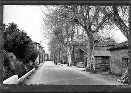 La Roquebrussanne - La Rue Du Portail ( édit. Cim ). - La Roquebrussanne