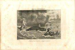 280820 - GRAVURE - 1835 - FRANCE PITTORESQUE CANADA COLONIE TERRE NEUVE PECHE HARPON BALEINE VOILIER - Other
