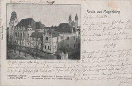 Magdeburg - Neues Museum - 1905 - Magdeburg