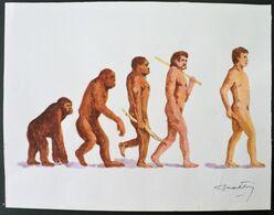 2009 URUGUAY Original Drawing Watercolor - Darwin Evolution Monkey - Signed Artist Menck Freire-Yv 2400 - Uruguay
