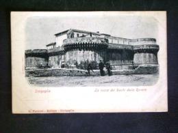 MARCHE -SENIGALLIA - ANCONA - F.P. LOTTO N°742 - Ancona