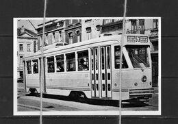 PHOTO TRAM 53 VILVOORDE REPRO MOTRICE 7019 - Tranvía