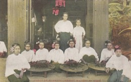 Burma, Group Of Cheroot Makers At Work C1900s Vintage Postcard - Myanmar (Burma)