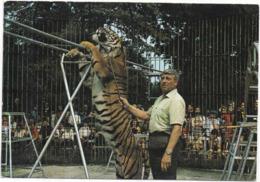 77 - FÉROLLES-ATTILLY, Près D'OZOIR-LA-FERRIÈRE - Parc Zoologique - Le Dresseur Willy (et Son Tigre) - CPM 10,5 X 15 Cm - Frankreich