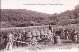 21 - Cote D Or -  Les Vendanges En Bourgogne - Transport Du Raisin - Frankrijk