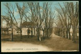 Griesheim Avenue Galliéni LK Darmstadt - Griesheim
