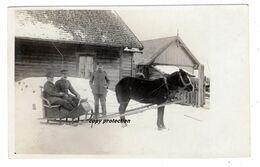 Pferd, Pferdeschlitten, Winter, Militär, 1. Weltkrieg, Alte Foto Postkarte, Schlitten, Kutsche - Pferde