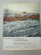 # ADVERTISING PUBBLICITA VOLKSWAGEN BEETLE UNA CARTOLINA DALL'IRLANDA  - 1966 - Werbung
