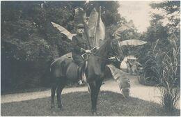 Carte-Photo : Portrait Militaire - Colonel à Cheval Par CABOUD à Annecy (BP) - War, Military