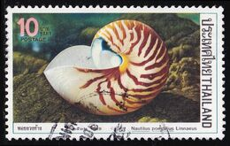 Thailand Stamp 1989 Molluscs (2nd Series) 10 Baht - Used - Tailandia