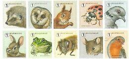 2020 Fauna Meersman MNH !! Hériso  Egel Owl Hibou Uil Eekhoorn Ecureuil Frog Grenouille Kikker .... - Bélgica