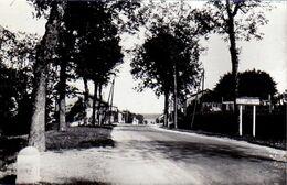 S35-017 Colombey-les-Deux-Eglises - Route Menant à Colombey - Carte Photo - Colombey Les Deux Eglises
