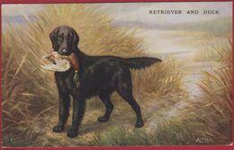 Illustrator Illustrateur ALPHA ALPHALSA Retriever Chien De Chasse Hunting Dog Hond Hund CPA Old Postcard Duck Canard - 1900-1949