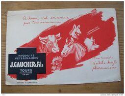 Buvard  Gaucher Et Fils Produits Vétérinaires Tours 37 Ferme Animaux Cheval Chien  Vache - Animales
