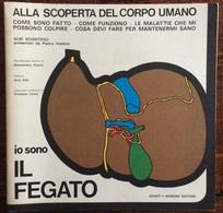 1973 ALLA SCOPERTA DEL CORPO UMANO Di Pietro Valdoni IO SONO IL FEGATO / Giunti Nardini Editore - Médecine, Biologie, Chimie
