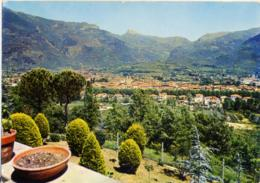 CAMAIORE  LUCCA  Panorama - Lucca