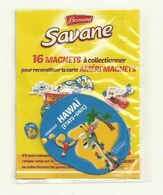 MAGNET SAVANE AMERI'MAGNETS HAWAI SOUS BLISTER FERME. - Andere