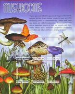 Grenada  Carriacau & Petite Martinique  2002  Mushrooms  M/S . MNH - Pilze