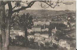 SALSOMAGGIORE- PANORAMA - Formato Piccolo - Viaggiata 1924 - Parma