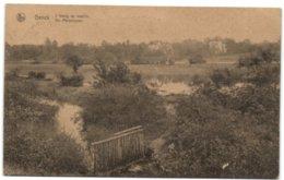 Genck - L'étang Du Moulin - Genk