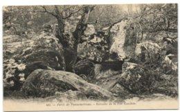 Forêt De Fontainebleau - Retraite De La Fée Candite - Fontainebleau