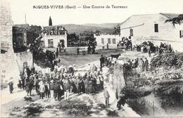 Aigres-Vives NA3: Une Course De Taureaux - Aigues-Vives