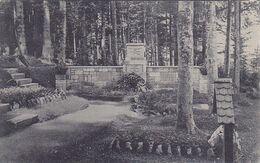 ( 99 ) - Vosges Vogesen  Senones Cimetière Friedhof   Carte  Allemande écrite 1° Guerre - Senones