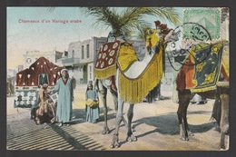 Egypt - Very Rare - Vintage Post Card - Camels Of An Arab Wedding - Cairo - 1866-1914 Khedivate Of Egypt