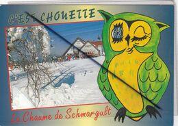 Le Chaume De Schmargult (88) C'est Chouette ! (Auberge,paysage De Neige,fantaisie Dessin D'une Chouette) - Sonstige Gemeinden