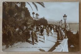 Monte Carlo Monaco Un Coin Des Terrasses - Terrassen