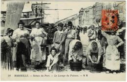 13 * Marseille - Scènes Du Port - Le Lavage Du Poisson - Petits Métiers