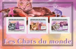 Guinea 2011 - Cats Of The World II.  Y&T 6046-6048, Mi 8903-8905 - Guinea (1958-...)