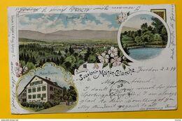 60154 - Yverdon  Souvenir De MaIson Blanche Litho 1899 - VD Vaud