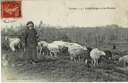 19 * Corrèze - Vieille Bergère Et Ses Moutons - Unclassified