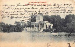 Russia - SAINT PETERSBURG - Peterhof Palace - Tsaritsyn's Island - Publ. Scherer, Nabholz And Co. 24 - Russland