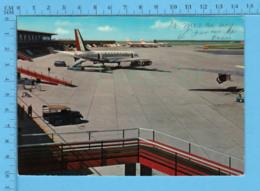 Italia Roma -  Aeroporto Leonardo Di Vinci  -  Postcard, Carte Postale - Aeródromos