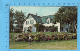 Cavendish P.E.I. - Green Gables, Les Pignon Vert, Farmhouse Who Was Made Anne Of Green Gables - Other