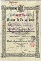 Titre Ancien - Compagnie Auxiliaire De Chemins De Fer Au Brésil - Titre De 1905 - Railway & Tramway