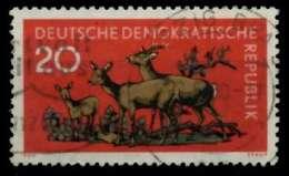 DDR 1959 Nr 739 Gestempelt X8B8BBE - [6] República Democrática