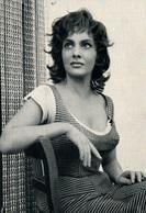 Actrice Cinéma - Portrait De Gina Lollobrigida, Photo Privat - Carte N° 16 Non Circulée - Schauspieler