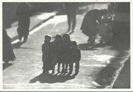 PHOTOGRAPHIE  WILLY RONIS  PETITS PARISIENS  HIVER 58 - Andere Fotografen