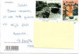 Timbre N° 3664 Sur CP + Vignette Débarquement Normandie Juin 1944 - Marcofilie (Brieven)