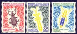 Terres Australes 1973 Yvert 49 / 51 ** TB - Ungebraucht