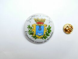 Superbe Big Pin's En Porcelaine , Blason De La Ville De Roanne , Exposition Canine , Chien , Dog - Steden