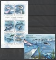 QQ204 2011 MOZAMBIQUE MOCAMBIQUE FAUNA MARINE LIFE DOLPHINS GOLFINHOS 1KB+1BL MNH - Dolphins