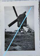 MOLEN Moulin Belgium - Foto
