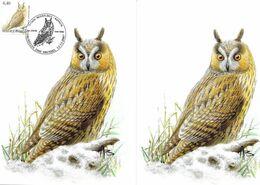 BUZIN Oiseau Hibou Moyen-Duc Cachet BRUXELLES Premier Jour 12/11/2007 Timbre Yvert 3706 Carte Signée Buzin - Maximum Cards